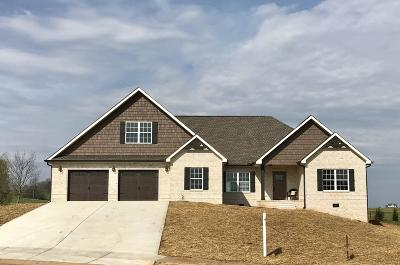 Sevierville Single Family Home For Sale: 1260 Rippling Waters Circle