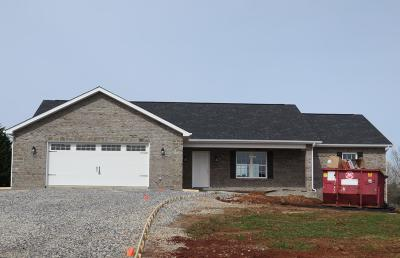 Sevierville Single Family Home For Sale: 1315 Misty Mead Drive