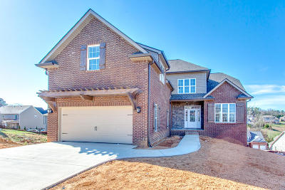 Knoxville Single Family Home For Sale: 10311 Clover Ridge Lane