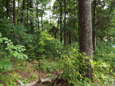 Jacksboro Residential Lots & Land For Sale: Hiwassee Drive