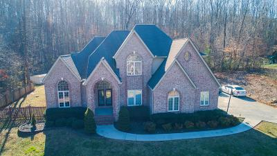 Knoxville Single Family Home For Sale: 1104 Rifle Range Drive