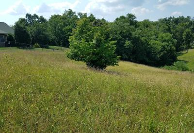 Residential Lots & Land For Sale: Lot #20 River Bend Drive