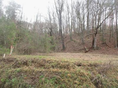 Clinton Residential Lots & Land For Sale: Pumpkin Hollow Rd