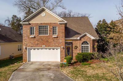 Knoxville Single Family Home For Sale: 933 Gothic Manor Way