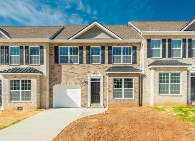 Knoxville Single Family Home For Sale: 4950 Briar Rock Lane