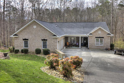 Loudon Single Family Home For Sale: 100 Tanasi Drive