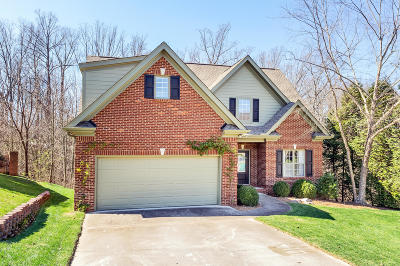 Knoxville Single Family Home For Sale: 7024 Shady Knoll Lane