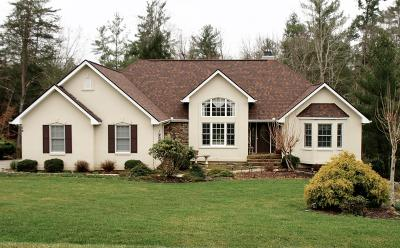 Crossville Single Family Home For Sale: 14 Castlebridge Lane
