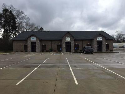 Sevier County Commercial For Sale: 11169 Chapman Hwy