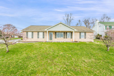Knoxville Single Family Home For Sale: 4763 Cabbage Lane