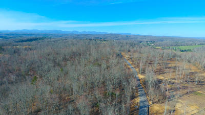 Lenoir City Residential Lots & Land For Sale: 411 Travellers Way