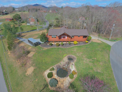 Sevierville Single Family Home For Sale: 3105 Jh Headrick Drive