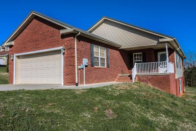 Dandridge TN Single Family Home For Sale: $259,000