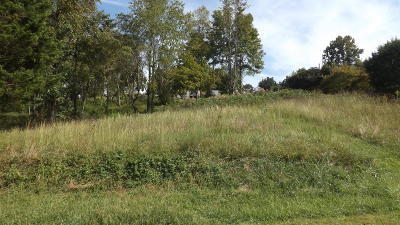 Residential Lots & Land For Sale: Meadow St