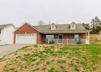 Knoxville Single Family Home For Sale: 500 Drakewood Rd