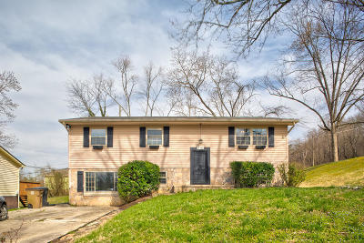 Knoxville Single Family Home For Sale: 112 Holston Court
