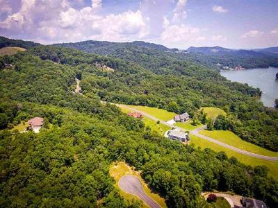 Anderson County, Campbell County, Claiborne County, Grainger County, Hancock County, Hawkins County, Jefferson County, Union County Residential Lots & Land For Sale: 8028 Mountain Ridge Drive