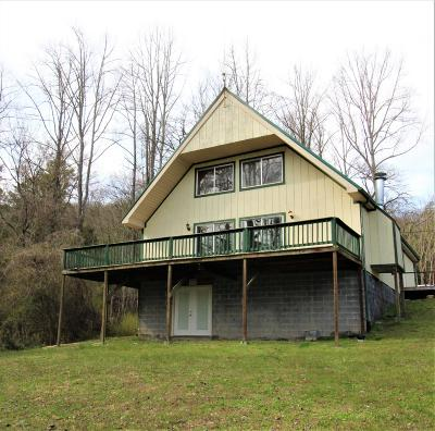 Sevierville Single Family Home For Sale: 928 Ditney Way