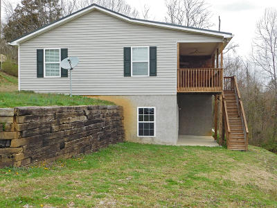 Dandridge, Sevierville Single Family Home For Sale: 2719 Von Hill Rd
