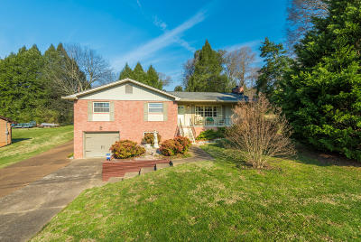 Anderson County Single Family Home For Sale: 525 Greenwood Drive