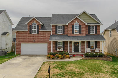 Knoxville Single Family Home For Sale: 2551 Sparkling Star Lane