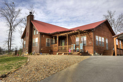 Dandridge, Sevierville Single Family Home For Sale: 567 Turtle Dove Tr