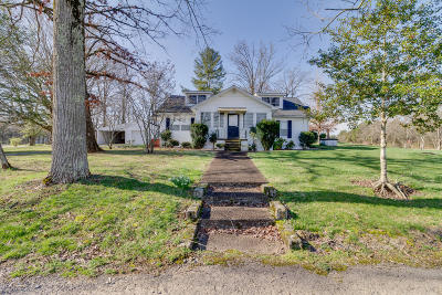 Strawberry Plains Single Family Home For Sale: 9448 Lusk Rd