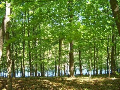 Meigs County, Rhea County, Roane County Residential Lots & Land For Sale: Lot 08 Dogwood Cove Drive