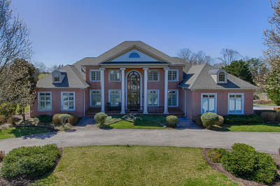 Knoxville Single Family Home For Sale: 2251 Henge Point Lane