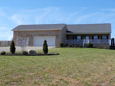 Dandridge, Sevierville Single Family Home For Sale: 1838 Pheasant Crossing Drive