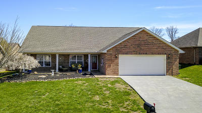 Maryville Single Family Home For Sale: 1010 Mercer Drive