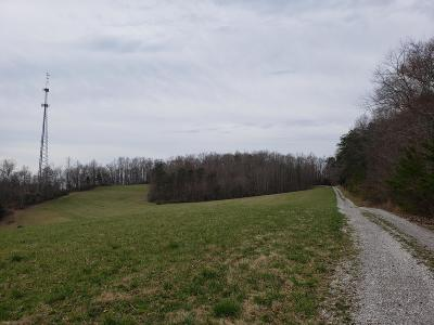 Anderson County Single Family Home For Sale: 296 Echo Valley Rd