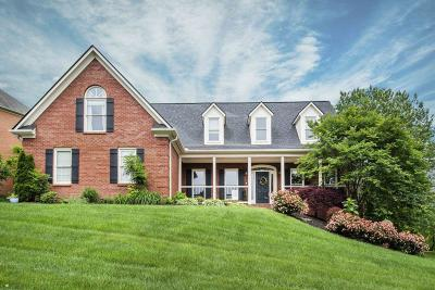 Knoxville Single Family Home For Sale: 341 Farragut Crossing Drive