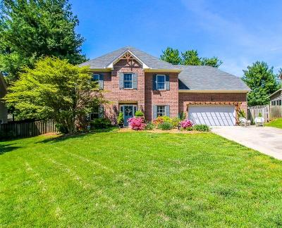 Knoxville Single Family Home For Sale: 917 Ilex Circle