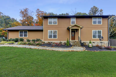 Knoxville Single Family Home For Sale: 401 Ensign Lane