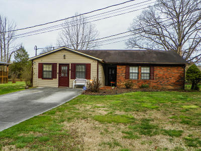 Pigeon Forge Single Family Home For Sale: 2837 Willa View Drive