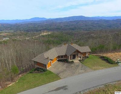Sevier County Single Family Home For Sale: 2941 Smoky Bluff Tr