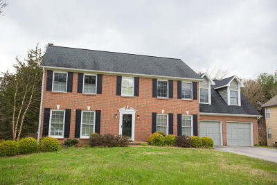Knoxville Single Family Home For Sale: 1321 Shadybrook Cove Lane