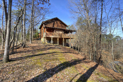 Sevierville Single Family Home For Sale: 833 S New Era Rd