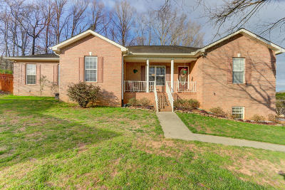 Knoxville Single Family Home For Sale: 8536 Reagan Woods Lane