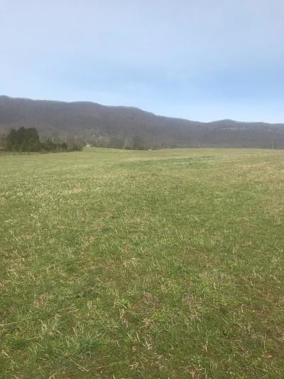Anderson County, Campbell County, Claiborne County, Grainger County, Union County Residential Lots & Land For Sale: Ruby Ln