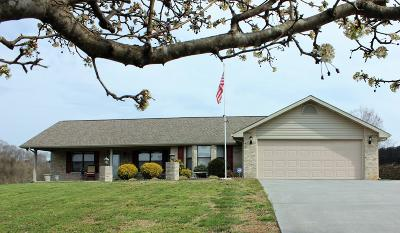 Sevierville Single Family Home For Sale: 1439 River Run Circle