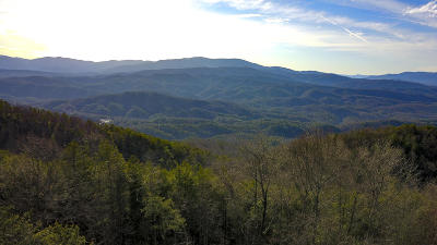 Maryville Residential Lots & Land For Sale: Lot 24, Chilhowee Mountain Tr