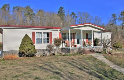 Knoxville Single Family Home For Sale: 917 Deaderick Rd