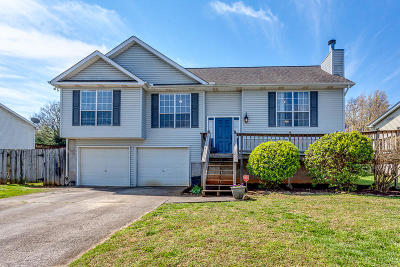 Knoxville Single Family Home For Sale: 1453 Carrie Belle Drive