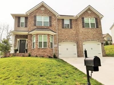Knoxville Single Family Home For Sale: 9817 Chesney Hill Lane