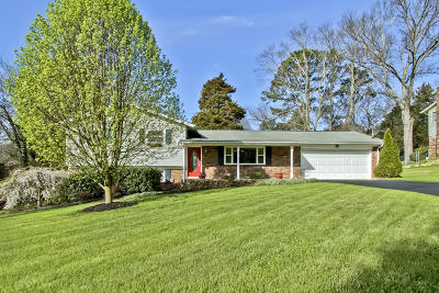 Knoxville Single Family Home For Sale: 9125 Carlton Circle