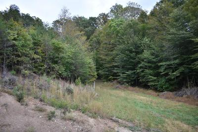 Anderson County, Campbell County, Claiborne County, Grainger County, Hancock County, Hawkins County, Jefferson County, Union County Residential Lots & Land For Sale: Lone Rd