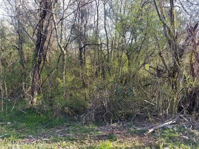 Residential Lots & Land For Sale: 166 Tsuhdatsi Way
