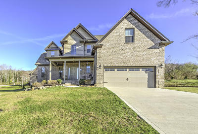 Anderson County Single Family Home For Sale: 106 Creek View Court
